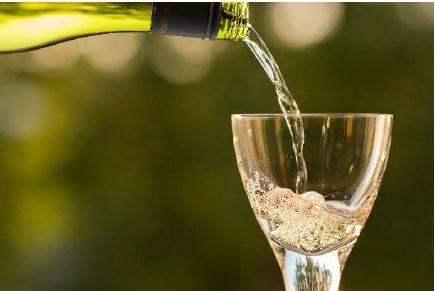 Weinprobe mit Live-Musik, Kellermeister und Sensorik-Experten
